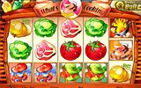 What's Cooking 30-line video slot game